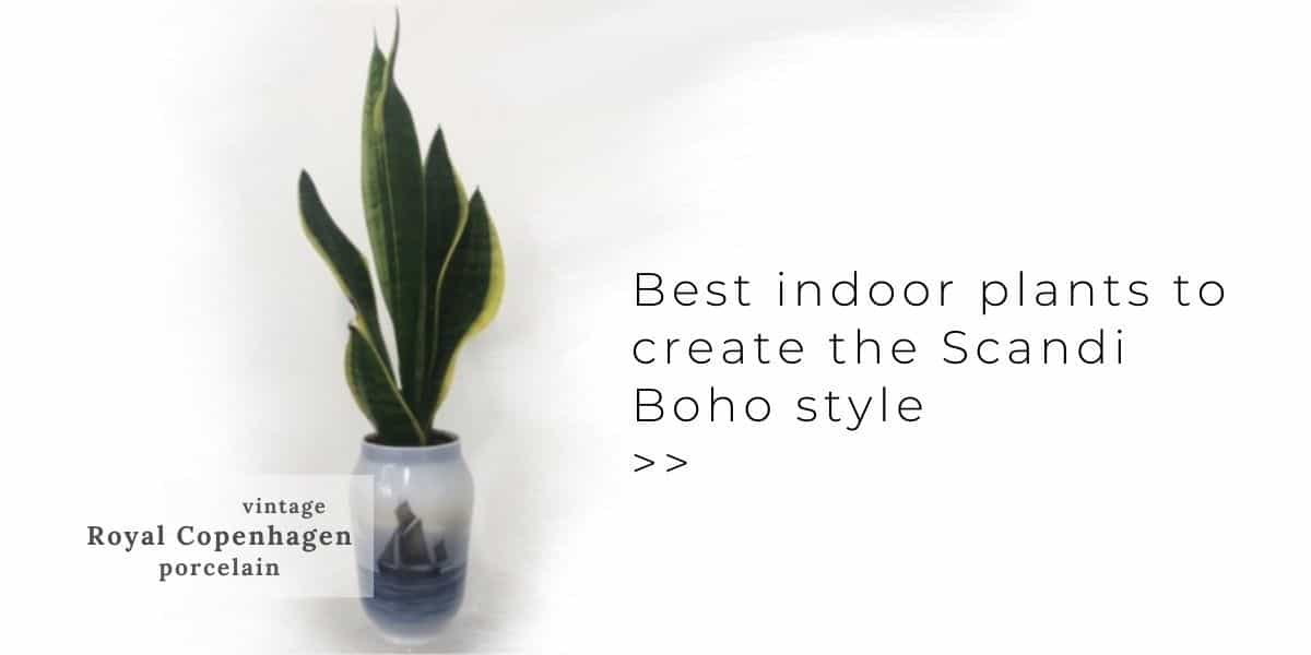 Indoor Plants for Scandi Boho in Royal Copenhagen