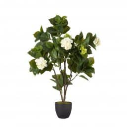 Faux Mophead Hydrangea Plant